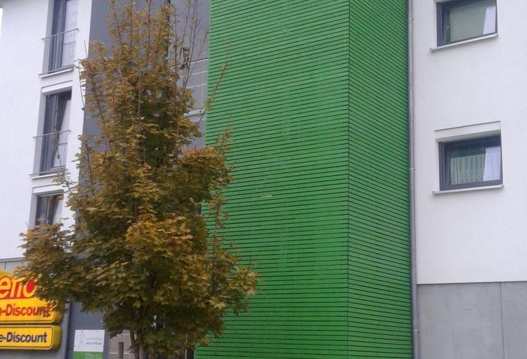 Zimmerei-Mohr-Fasadenverkleidung